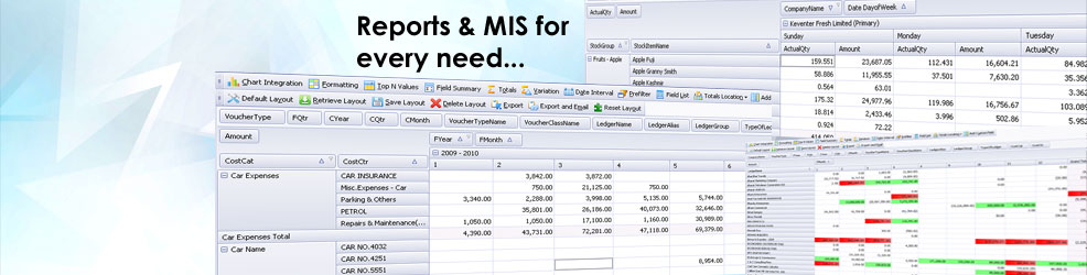 Customize your own reports